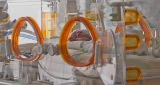 Ein Frühchen im Inkubator der Intensivstation. [Copyright by pixeldiversity.com]